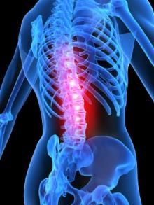 back-physiotherapy.img_assist_custom-220x293